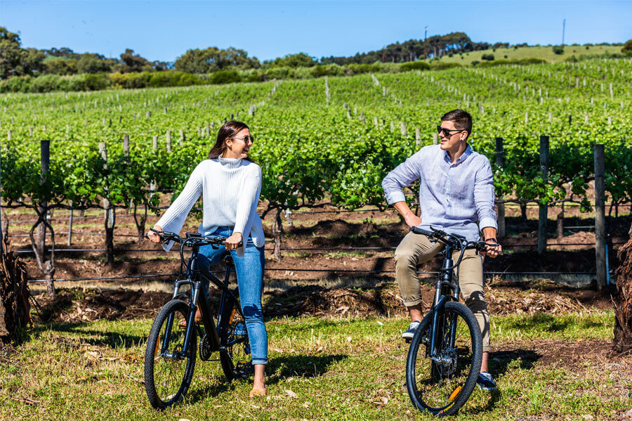 eBike Self Guided bicycle Tour through McLaren Vale