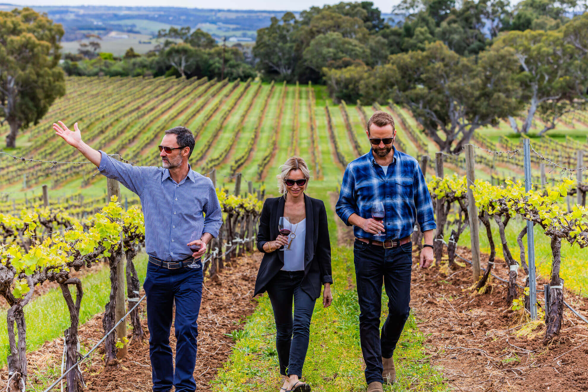 The Ultimate McLaren Vale Tour