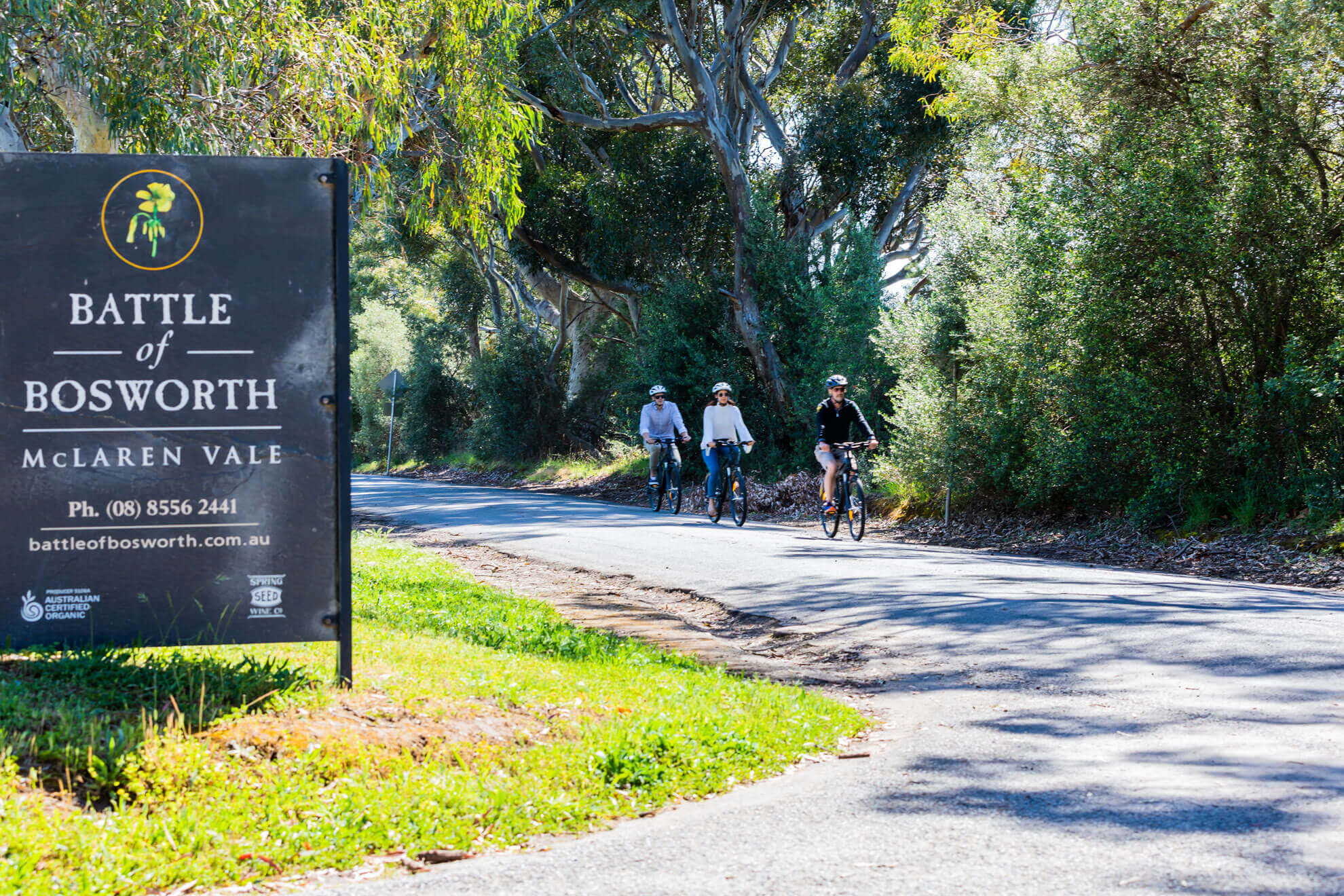 Visit Battle of Bosworth on your eBike in McLaren Vale