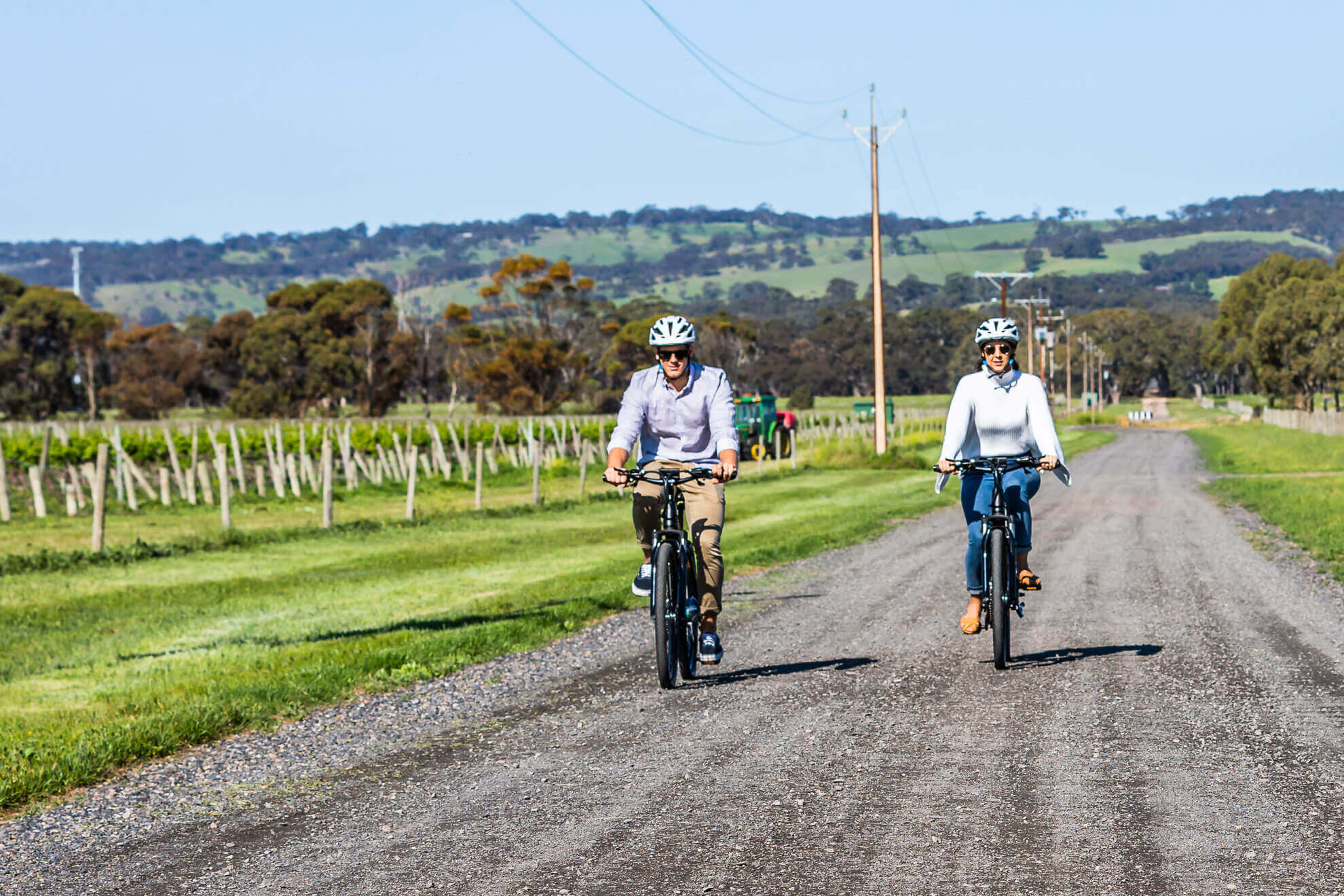 Shiraz Trail on your self-guided eBike Tour in McLaren Vale